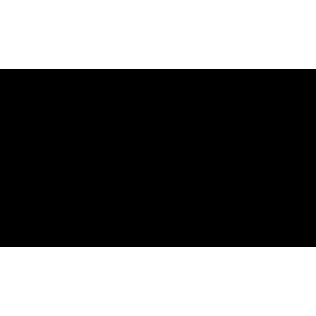 Wkład kominkowy VN 610/430 prawy BS gilotyna